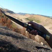 Molise knife moufflon cm 43