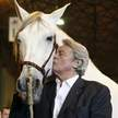Messer Wacholderholz Arabisches Pferd A. Curreli