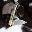 Giuseppe Galante su fusteri coutelier