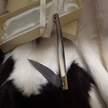 Pattada hirtenmesser cm 10 Silvano Usai