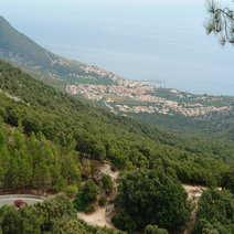 Dorgalesa in montone Luciano Spanu