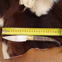 Dorgalese in muflone cm 11 Tore Lorrai