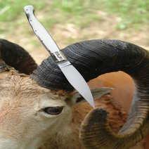 Coltello sardo pattada cm 11 corno bianco